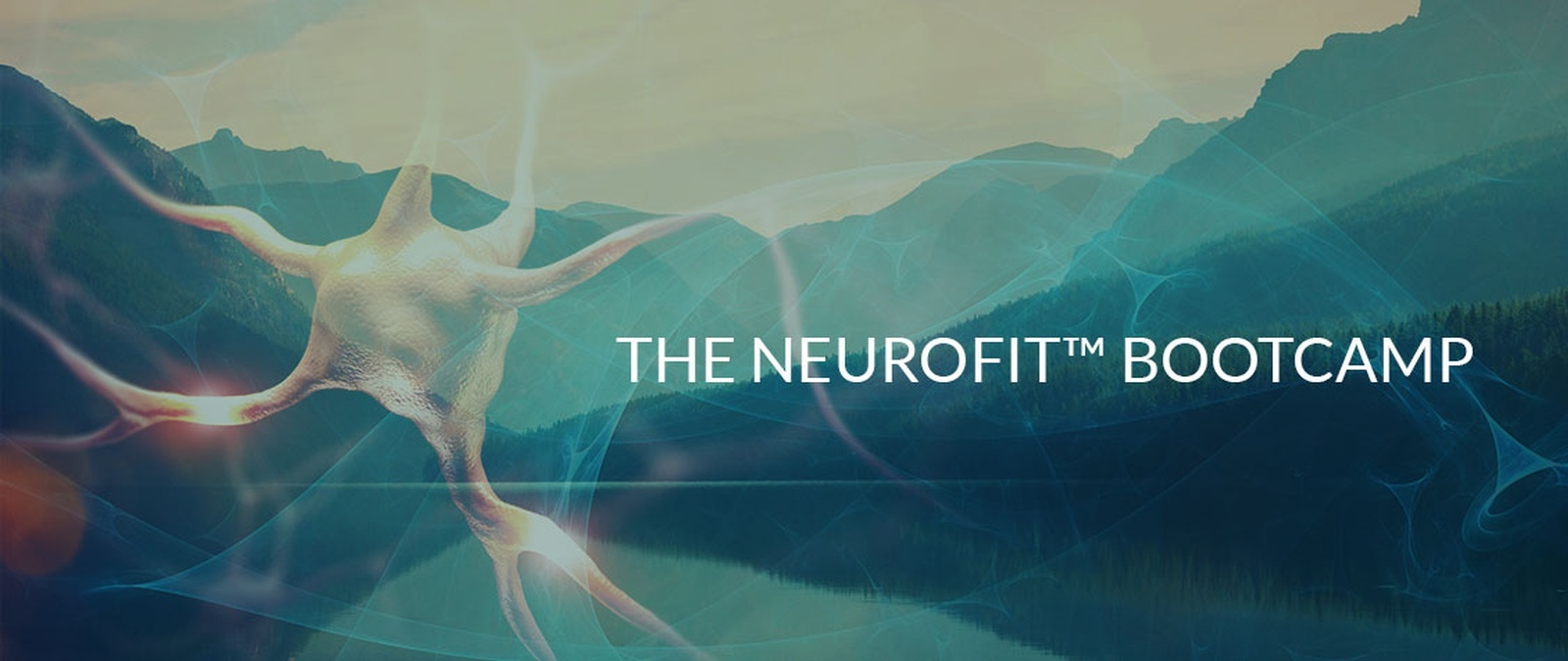 neurofit-bootcamp